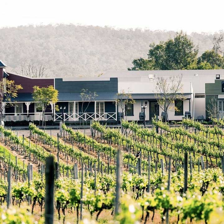 Dusty Hill Winery with vineyard in front